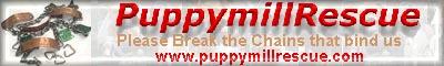 puppymill rescue